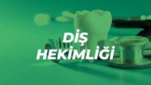 İtalya Diş Hekimliği Sınavı Hazırlık Kursu